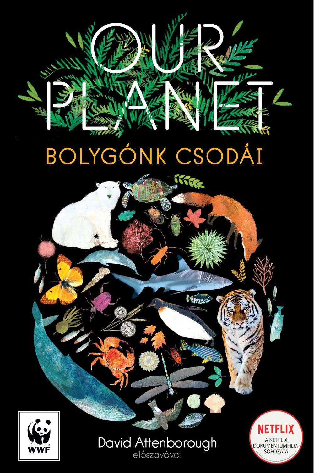 - - Our Planet - Bolygónk csodái